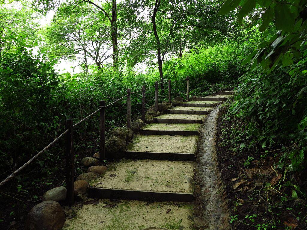 Hike at Costa Rican Trip.jpg