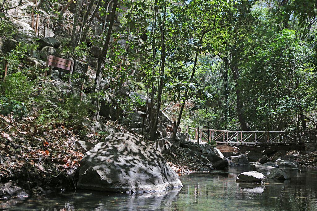 Hiking Trials in Costa RIca.jpg