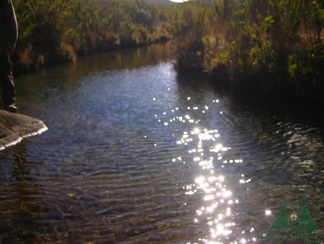 rio chirripo Lodge6.jpg