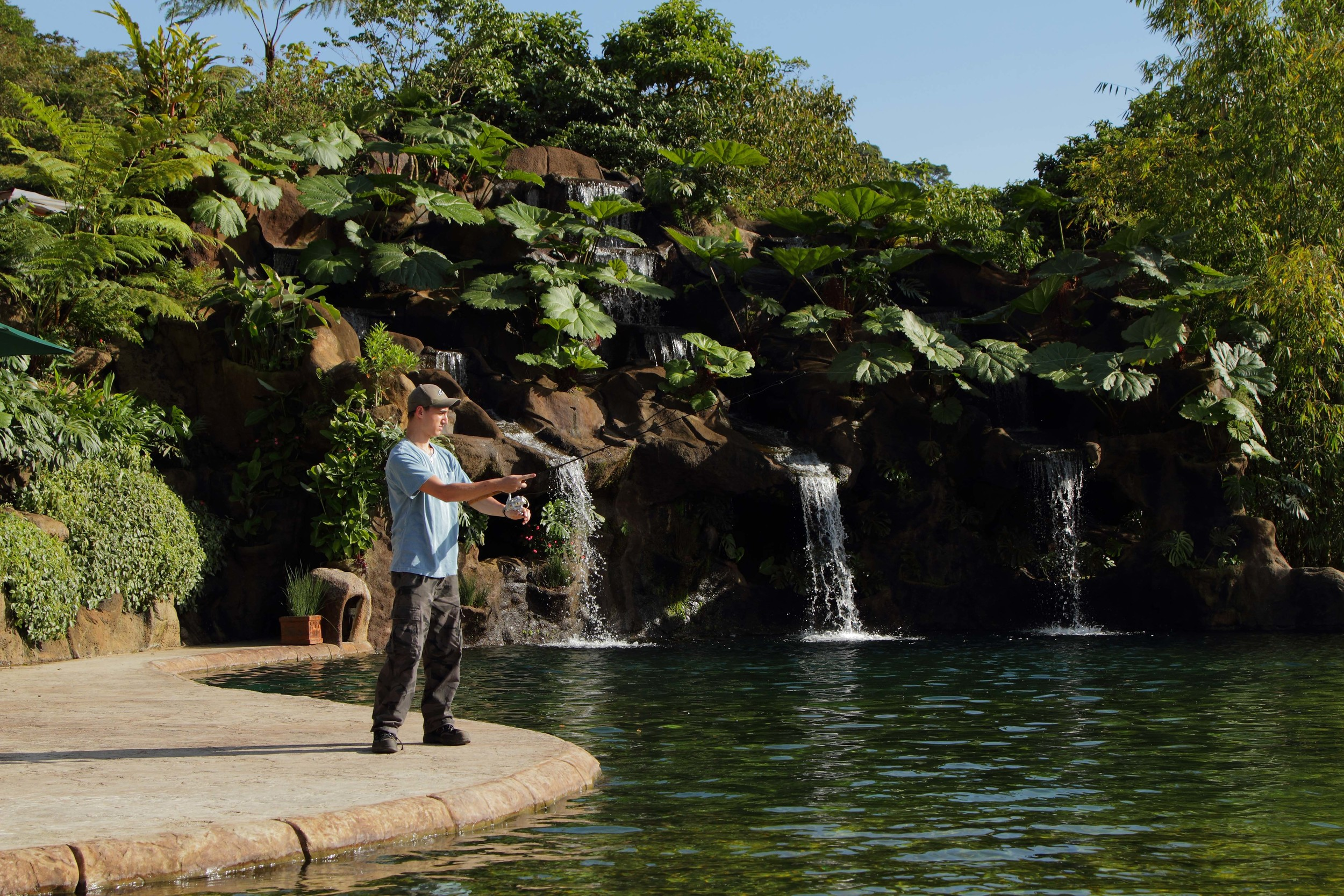 waterfall-gardens-04.jpg