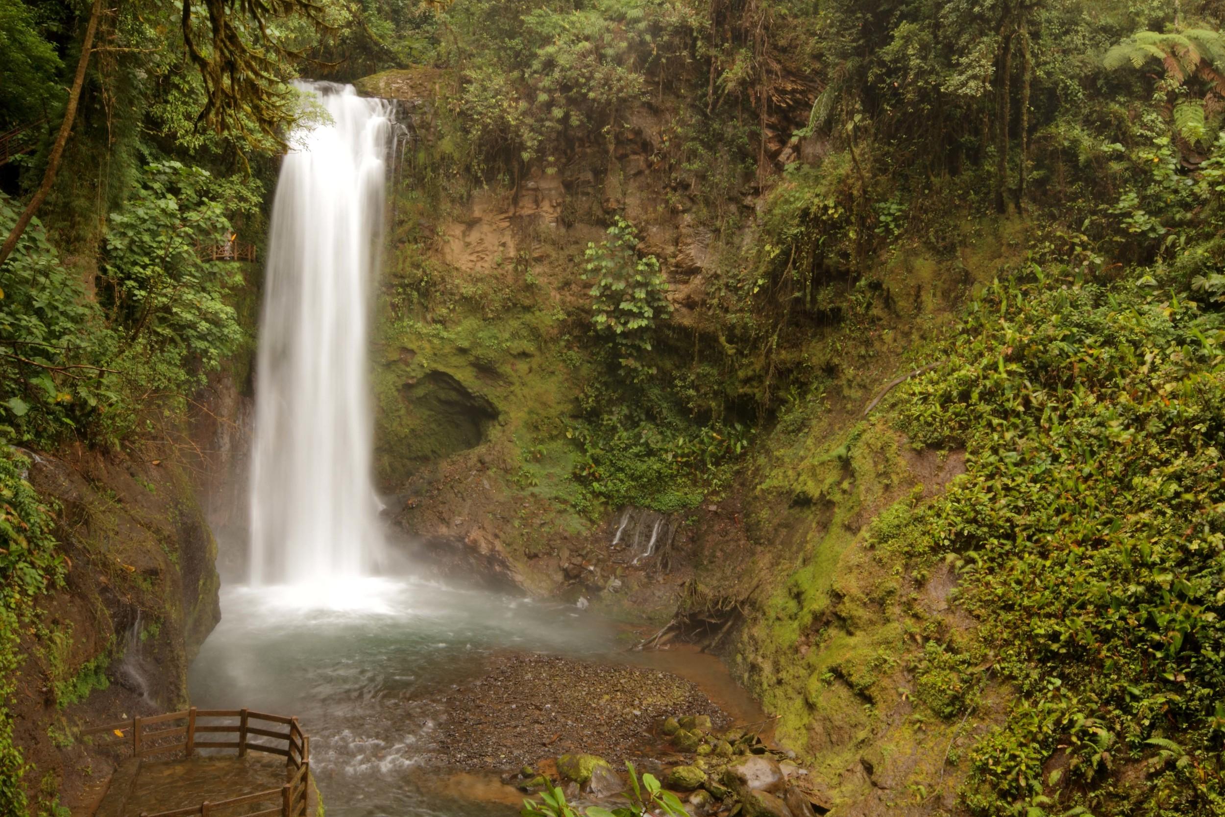 waterfall-gardens-11.jpg
