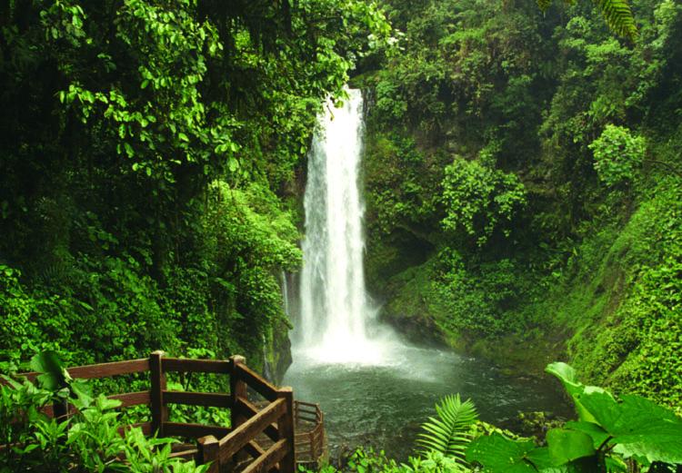 waterfall-gardens-069.jpg
