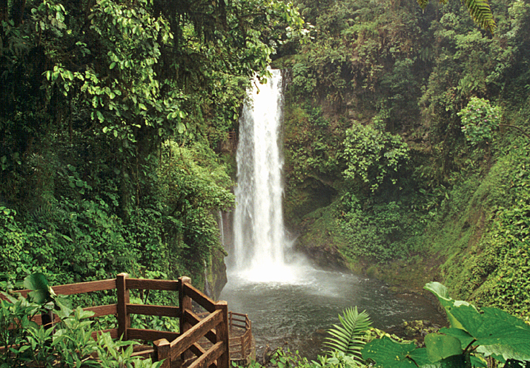 waterfall-gardens-068.jpg