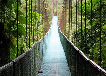Monteverde Cloud Forest Hotels