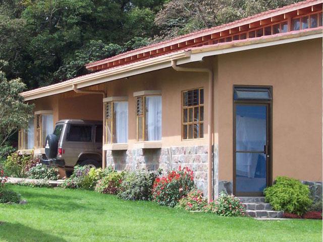 15_orquideasmonteverdecostarica.jpg