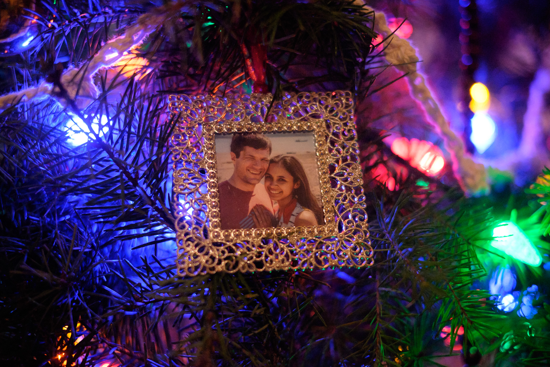 photo gift guide_ornaments-4225