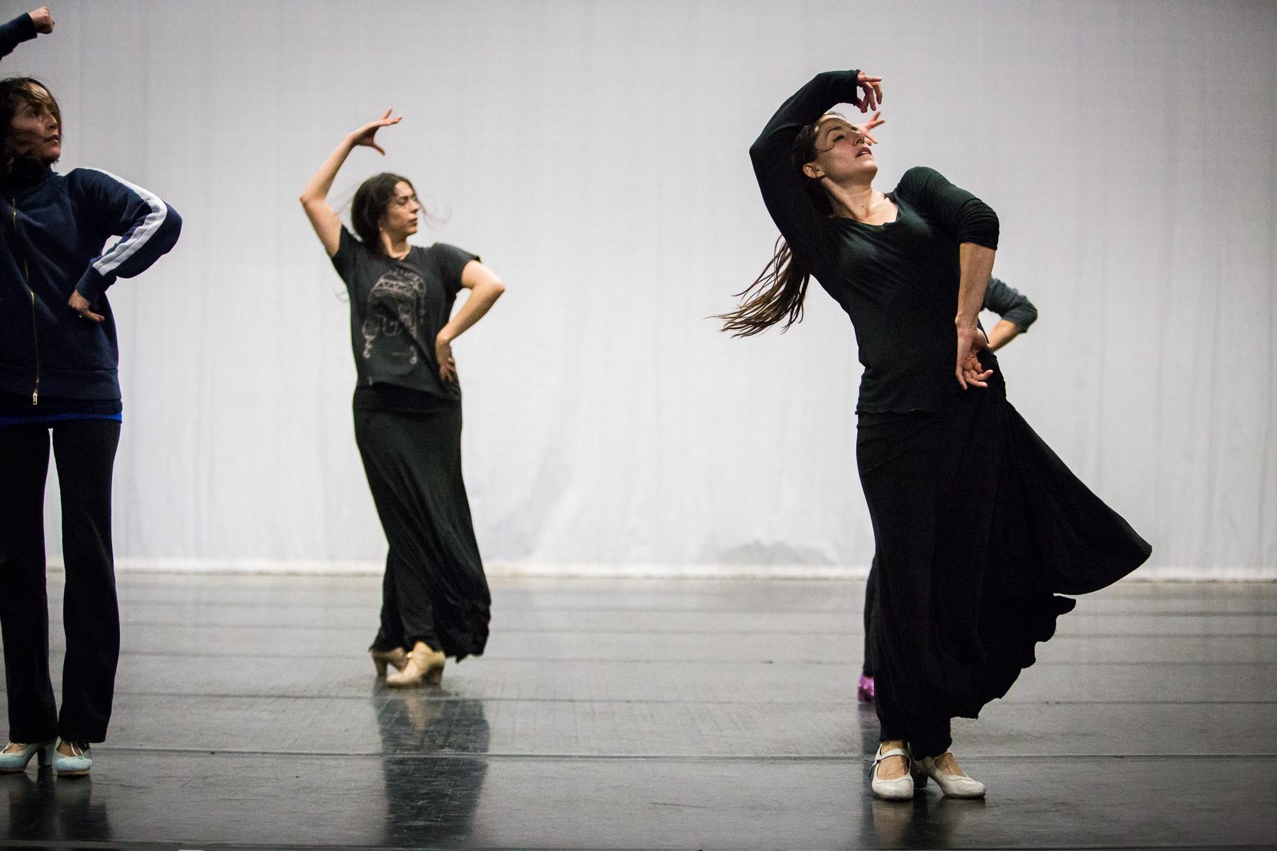 flamenco-5808
