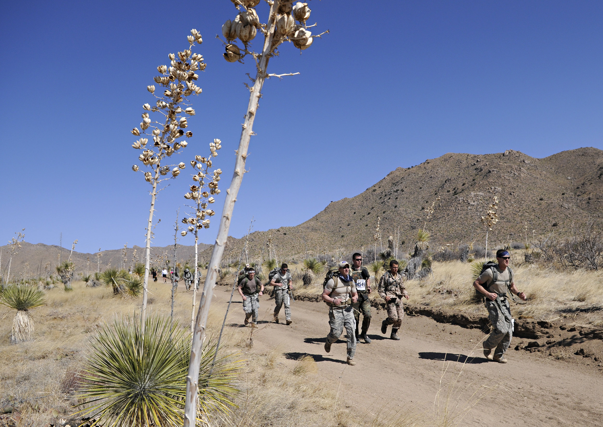 Runners pass by tall yuccas during the 22nd Annual Bataan Memorial Death March at White Sands Missile Range, Sunday, March 27, 2011. (Morgan Petroski/Albuquerque Journal)
