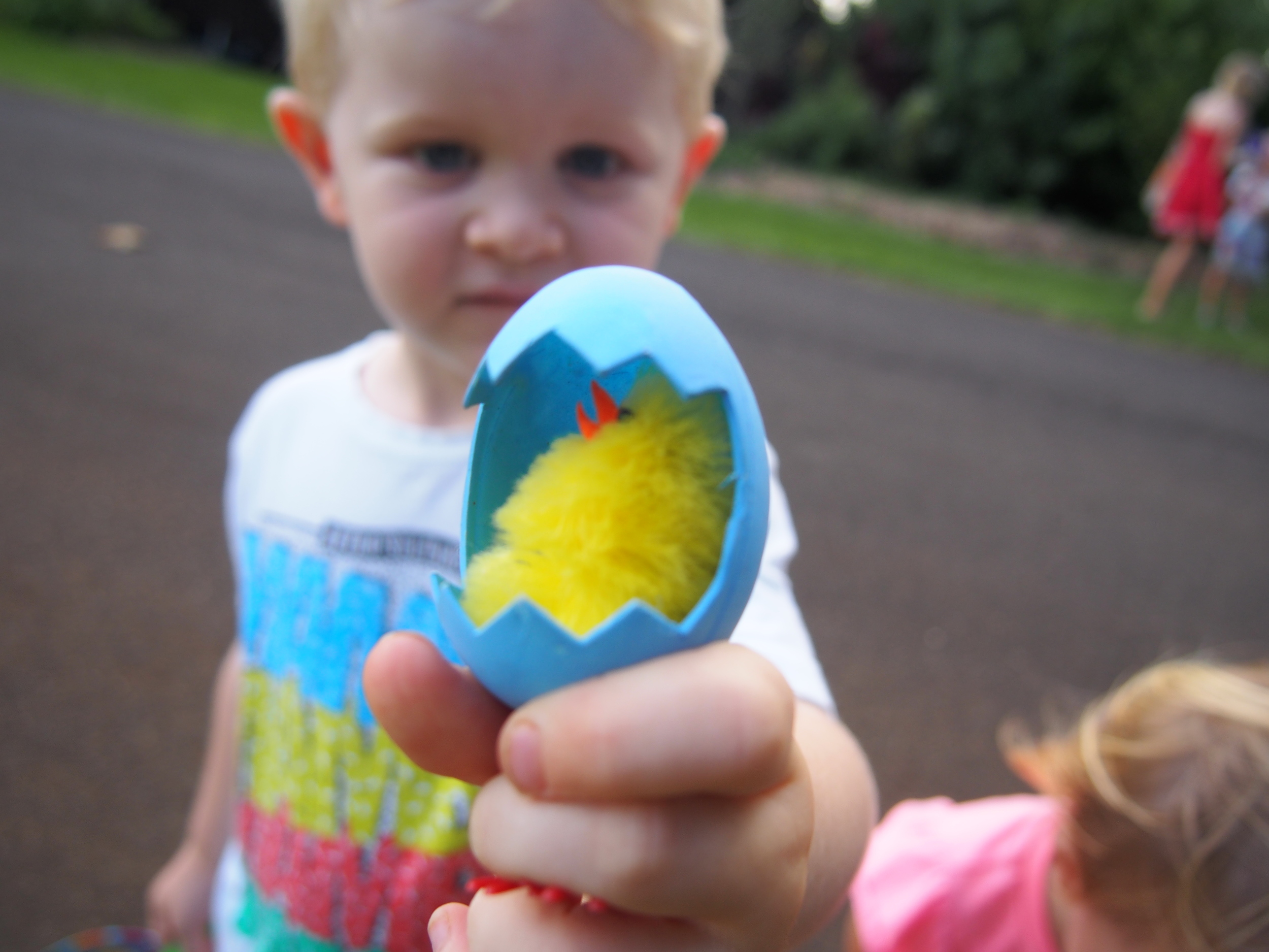 Kids searched for chocolate amongst the verge edibles but found chickens instead!