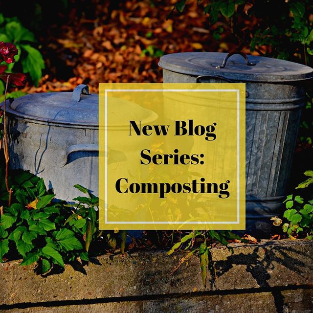 We keep mentioning our new, compostable packaging for the Bug Repellent Skin Balm, and our previous blogs mention buying compostable products over disposable, but we realized that some people may not realize the benefits of composting, or how easy it is to get started, so we decided to fix that!  Today is the first in a series of blog posts dedicated to composting! 🌱🌳 Today's post: What is Composting and Why is it Important?♻ Link in bio. ⠀⠀⠀⠀⠀⠀⠀⠀⠀ https://www.kosmatology.com/blog/2019/7/8/what-is-composting-and-why-is-it-important #compost #composting #reducereuserecycle #livesimply #kosmatologyblog #organiclifestyle #gardening #greenlifestyle #holisticliving #hippielifestyle #cleanliving #compostingiscool #raiseyourvibrations #kosmatology #gardenlife
