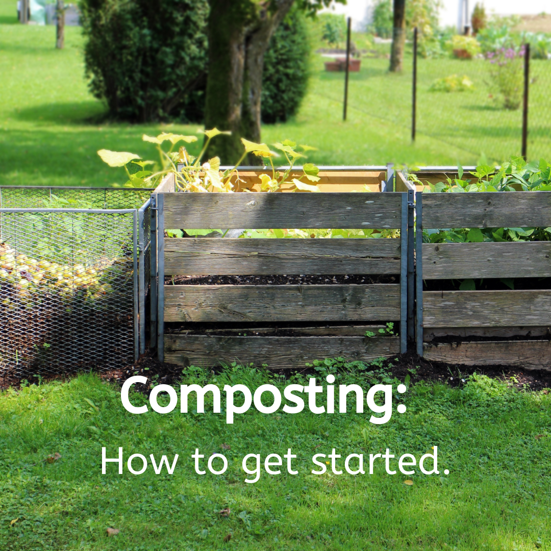 "Three compost bins, one on left made of metal fencing, middle and right made of wood. Text reads ""Composting: How to get started."""