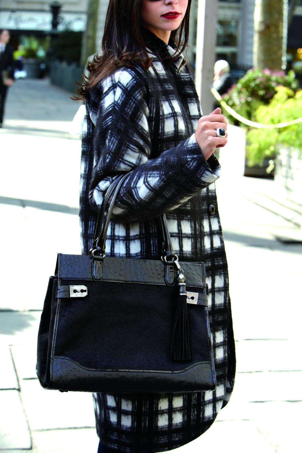 DINA Black haircalf.jpg