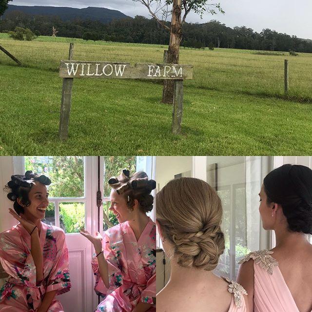Elegant chignons for this preety in pink pair..#bridalhair #bridalmakeup