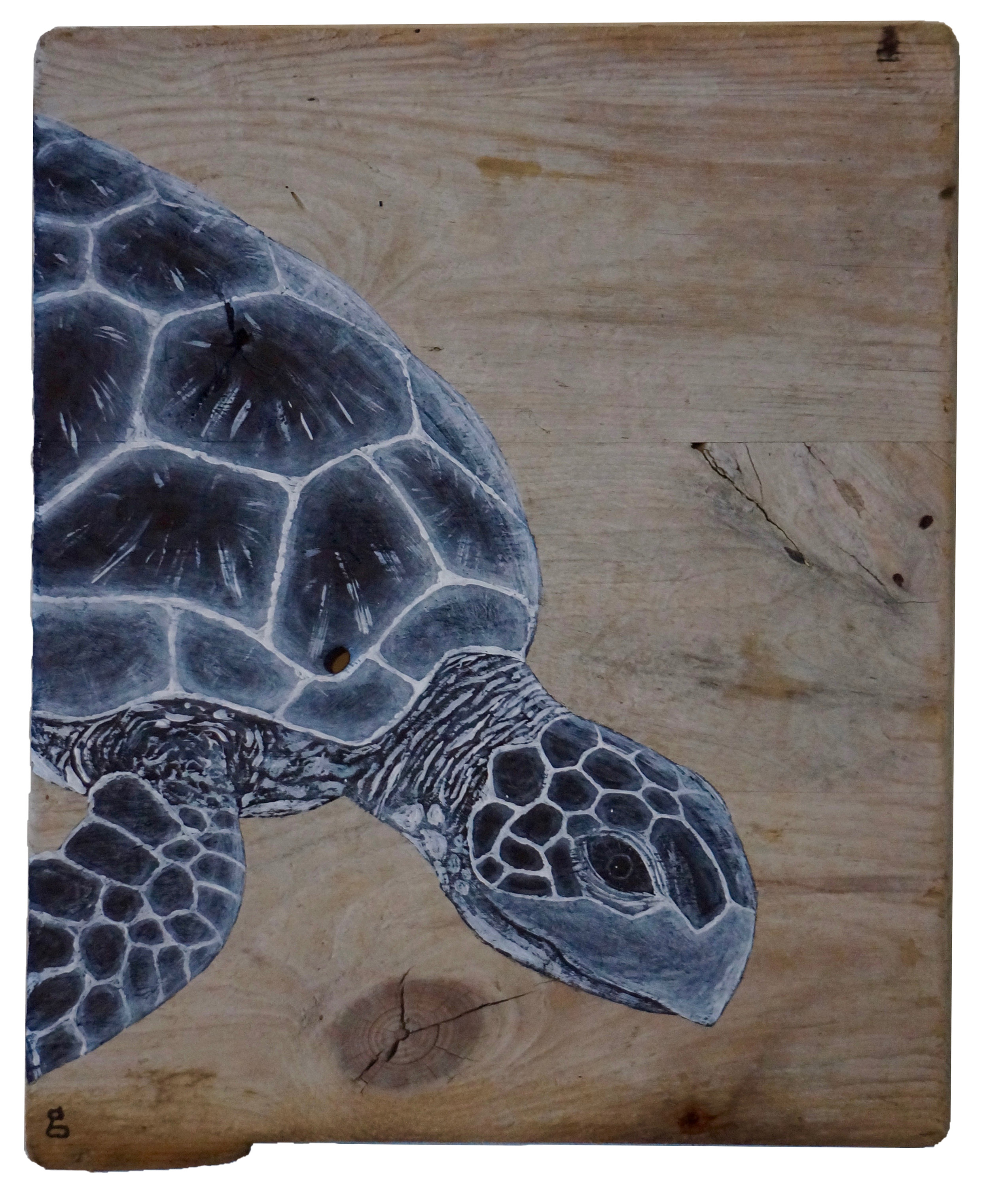 "SEA TURTLE II  2017  ACRYLIC ON FOUND WOOD  14 1/2"" x 12"" x 1/2"""
