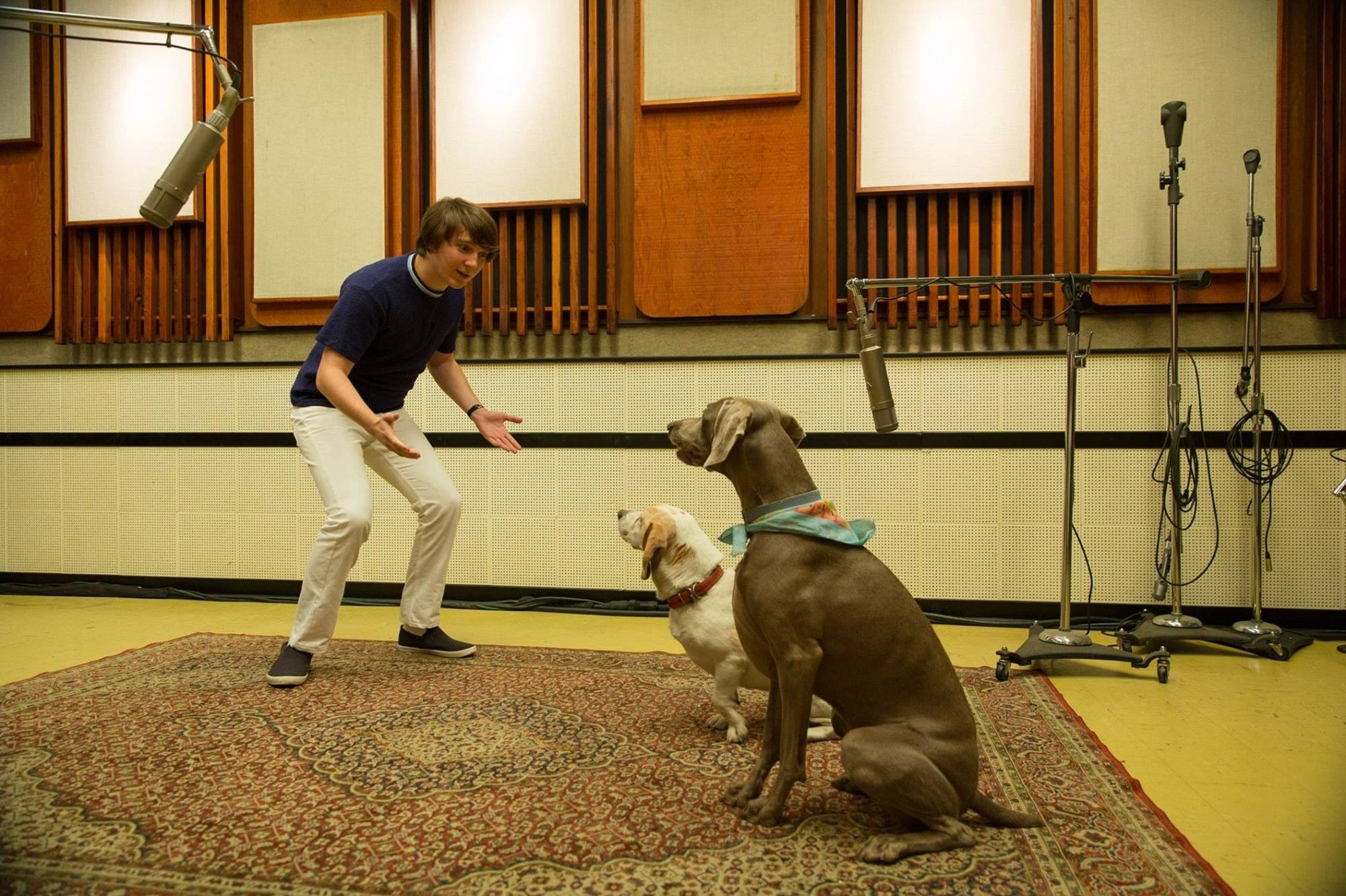 Paul Dano (and friends) record the Beach Boys' 'Pet Sounds'in  Love & Mercy.