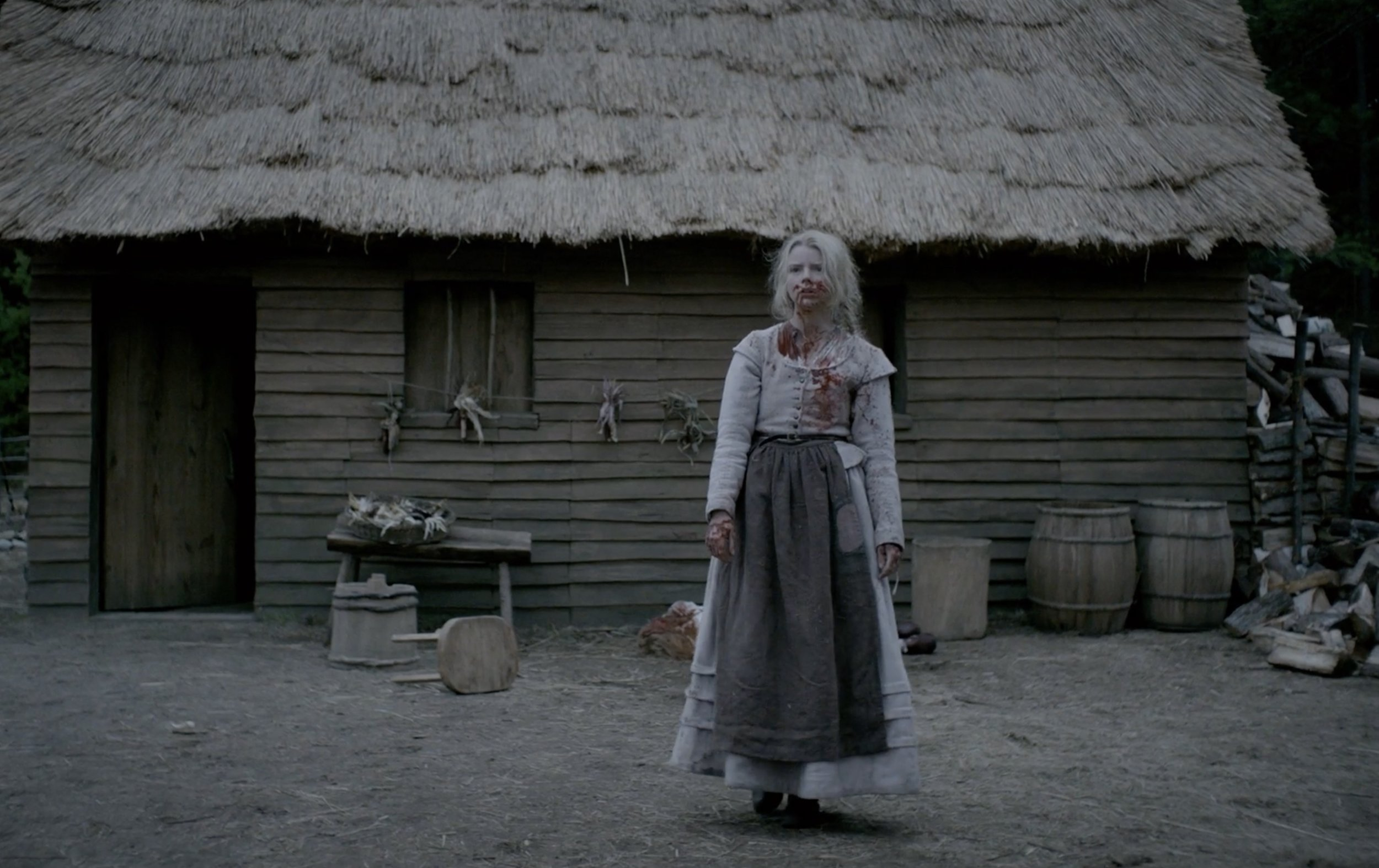 JEREMY'S BEST FILM OF 2016:  The Witch  (UK – dir. Robert Eggers)