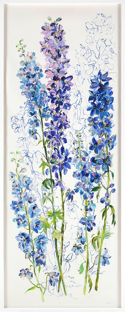 Delphiniums-Protection