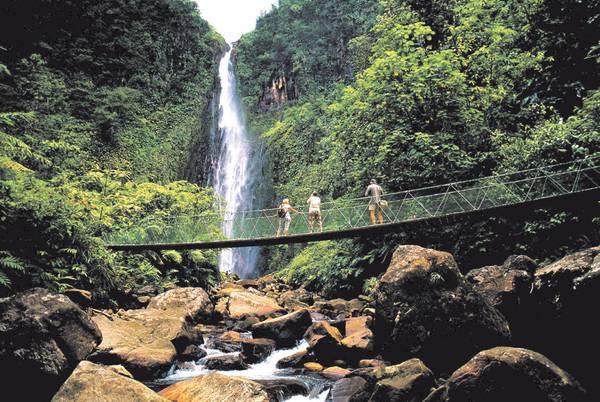 waterfallguadeloupe.jpg