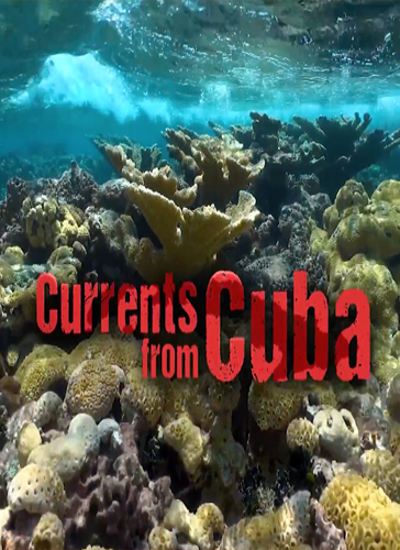 Currents from Cuba