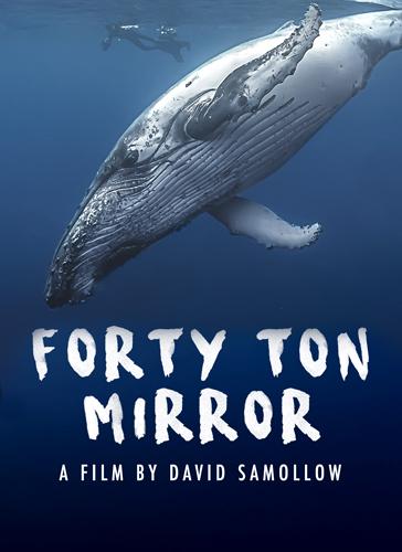 Forty Ton Mirror