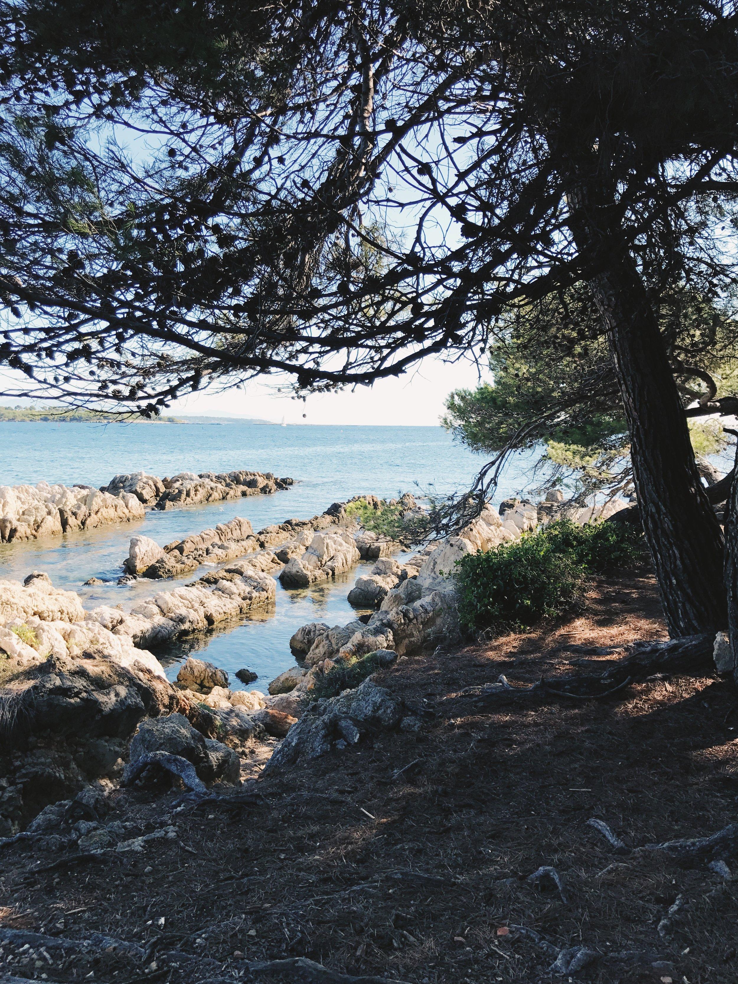 island 4.jpg