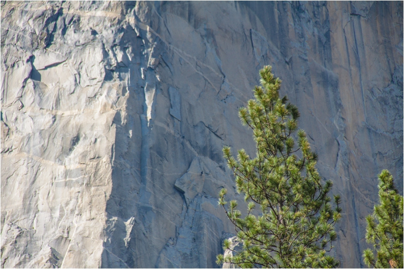 Do you see the climbers on El Capitan?