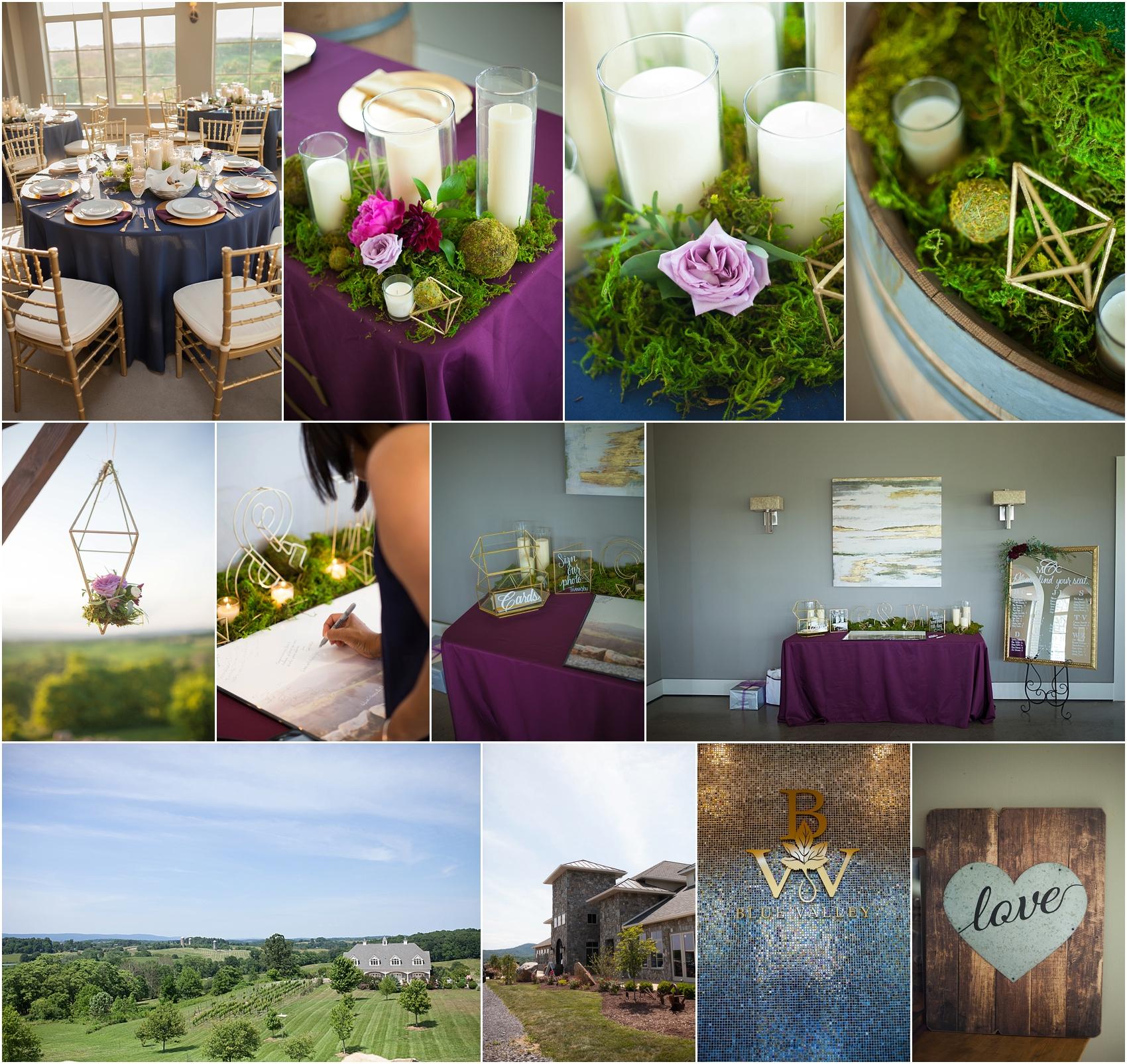 Blue Valley Winery Wedding Feather n Oak Photography_0039.jpg