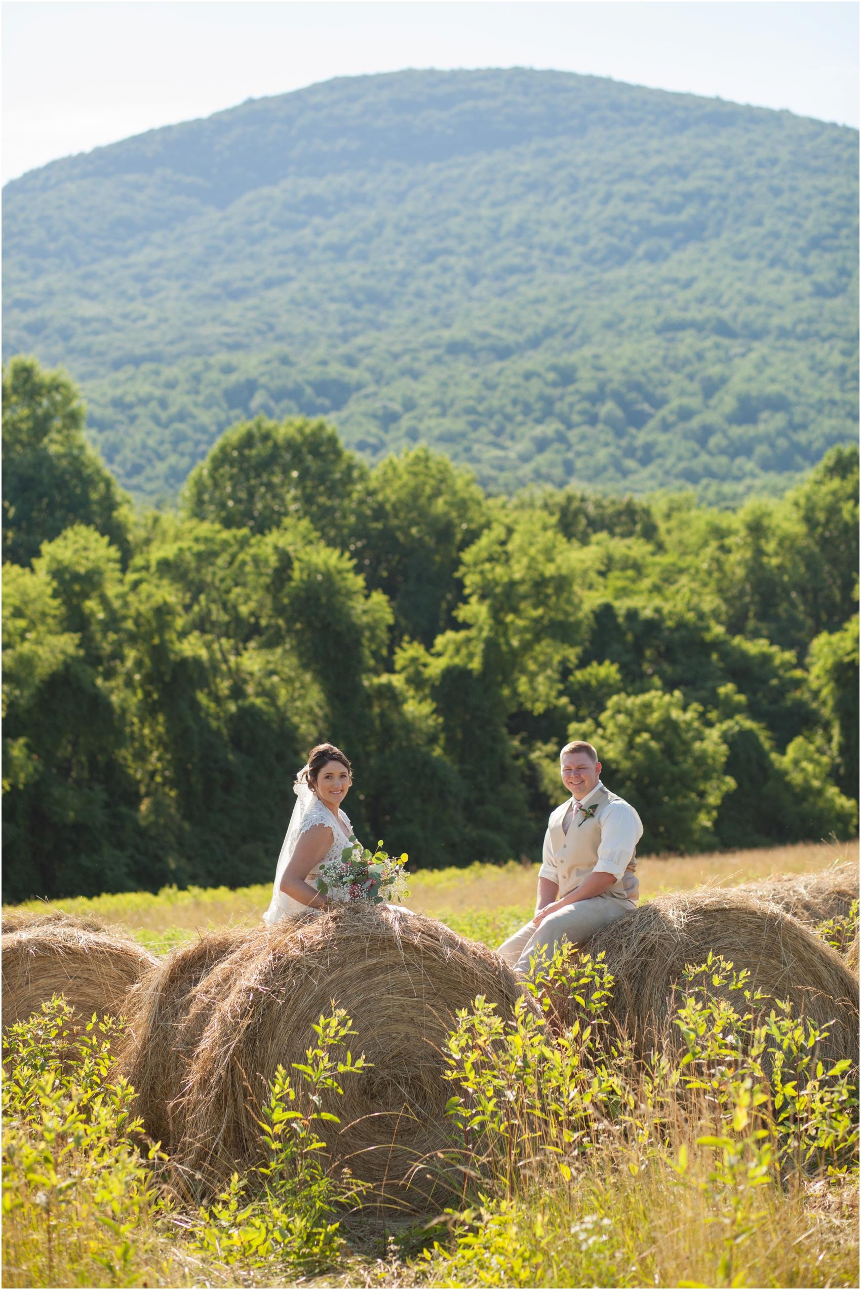 Rodes Farm Charlottesville VA Wedding-31-3.jpg