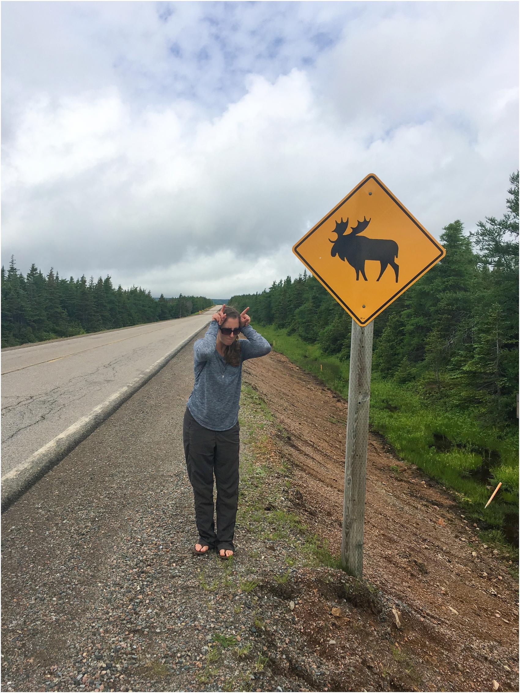 CanadianRoadTrip2016-62.jpg