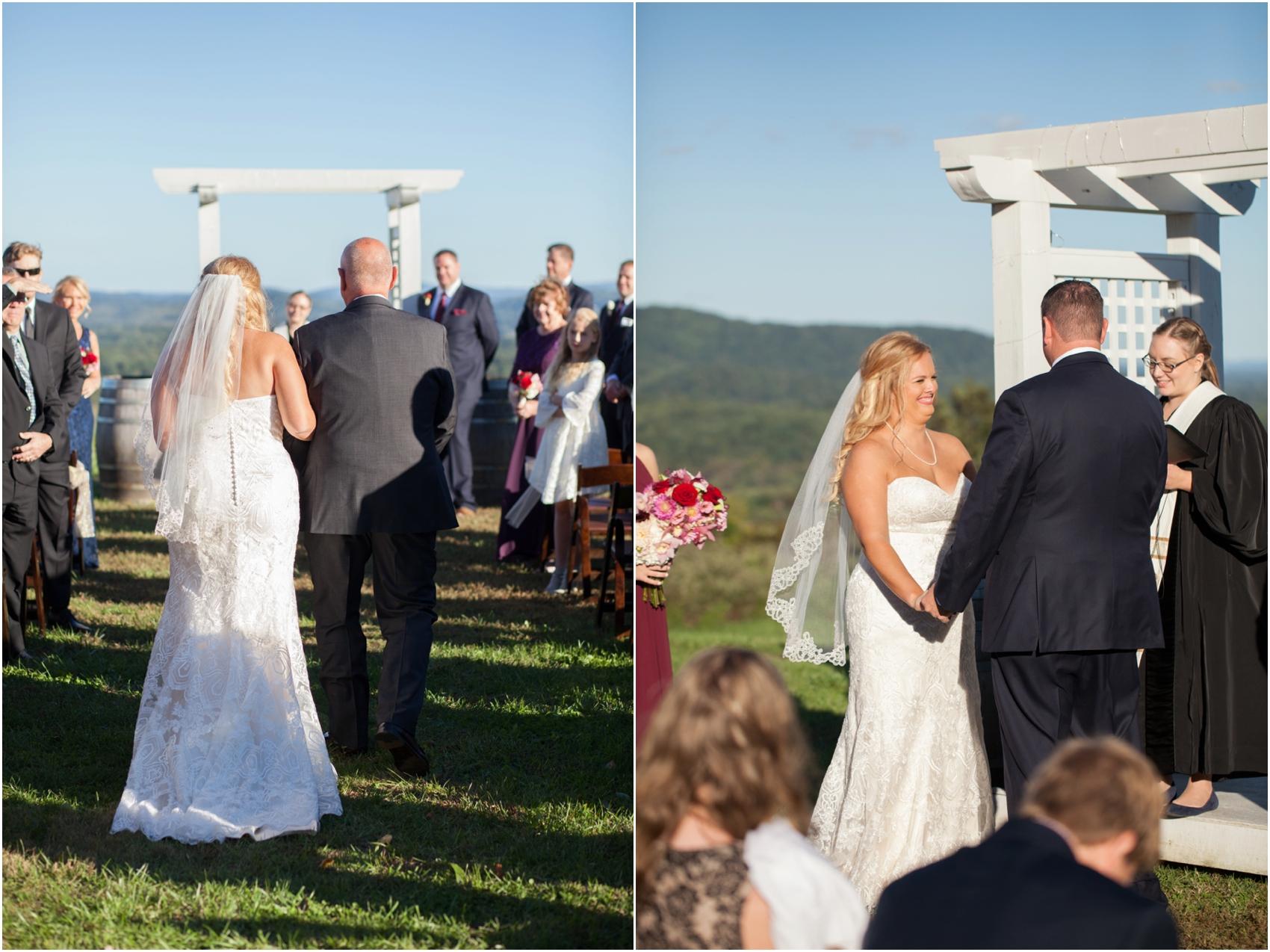Grace-Estate-Winery-Fall-Virginia-Wedding-6728.jpg