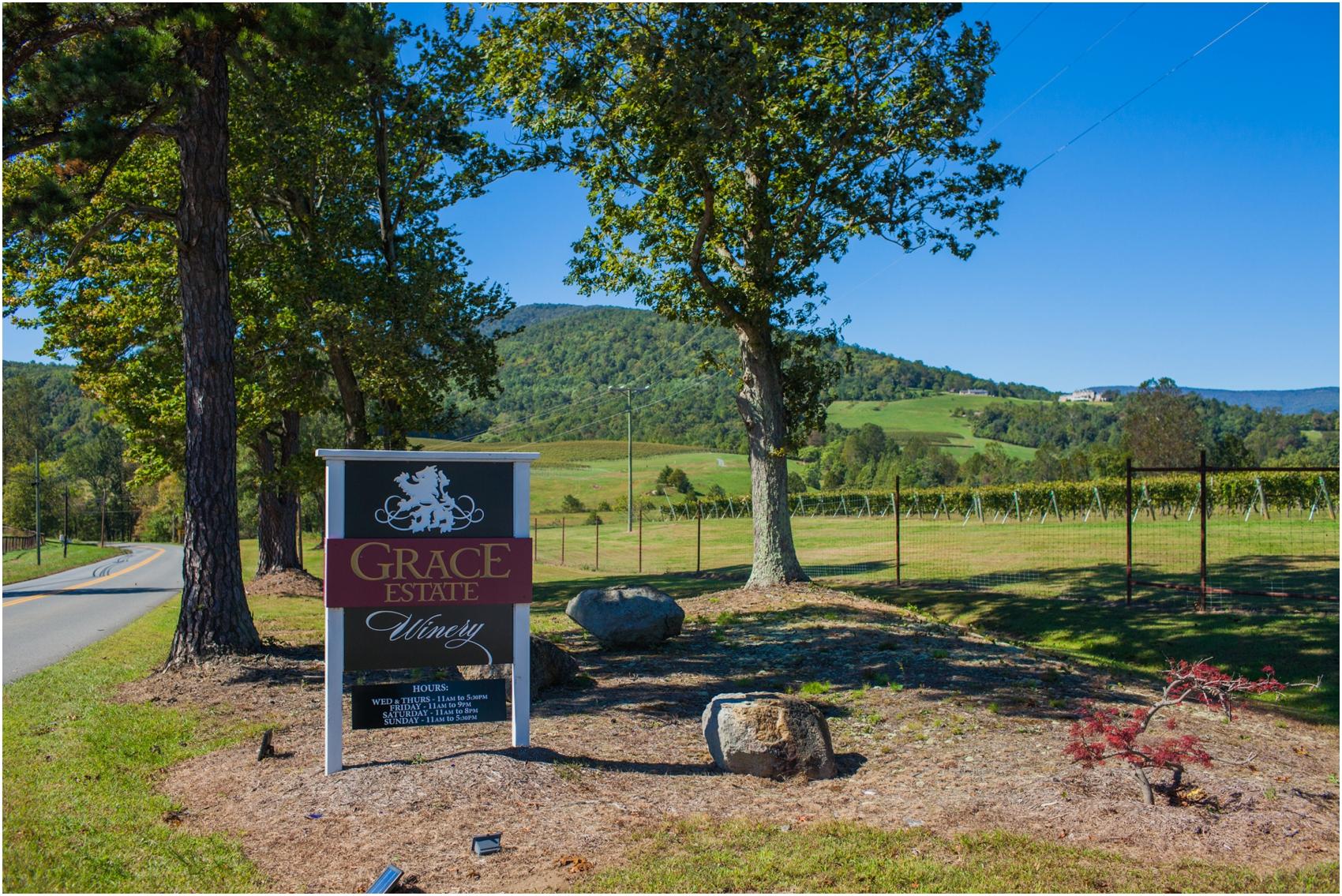 Grace-Estate-Winery-Virginia Wedding-5605.jpg