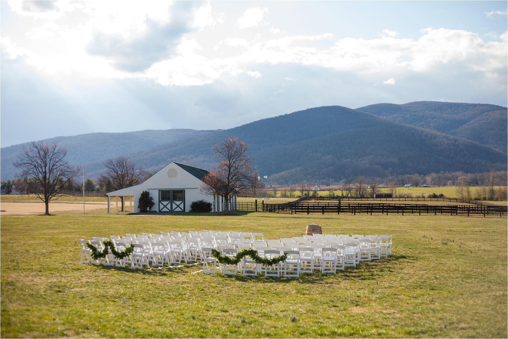 King-Family-Vineyard-Spring-Virginia-Wedding-1453.jpg