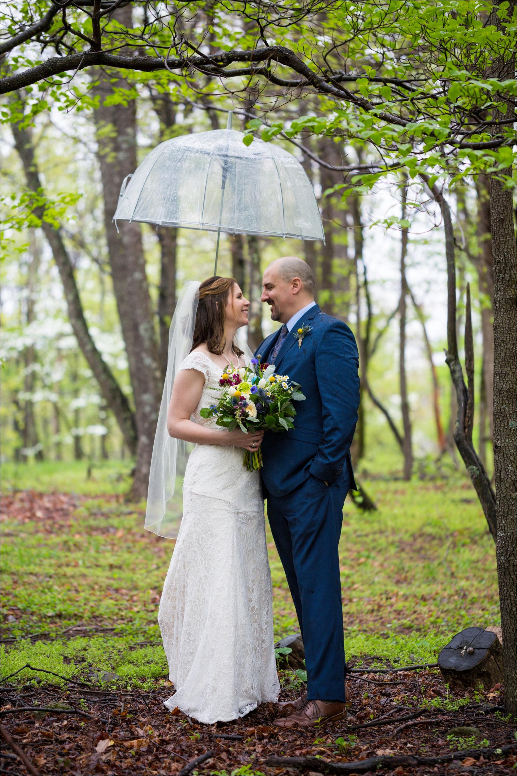 Lydia-Mountain-Spring-Virginia-Wedding-0452.jpg