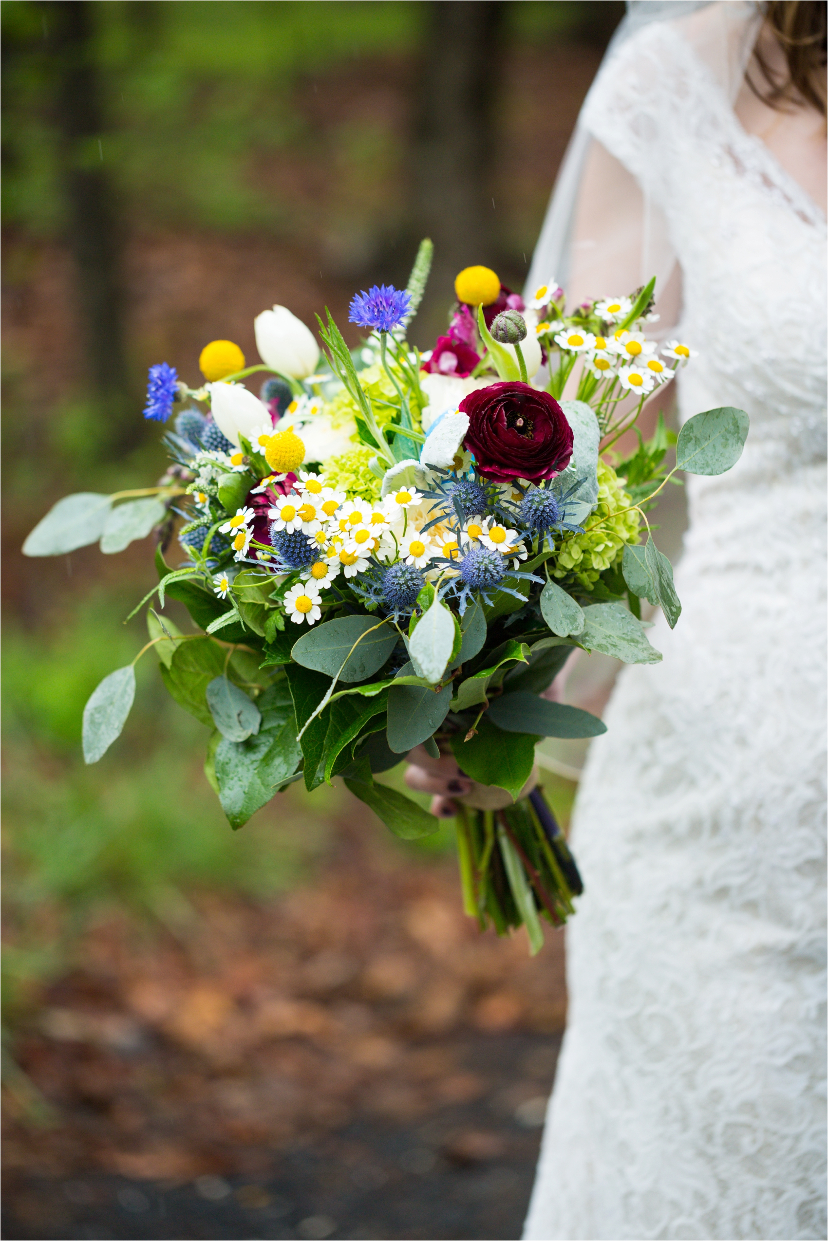 Lydia-Mountain-Spring-Virginia-Wedding-0438.jpg