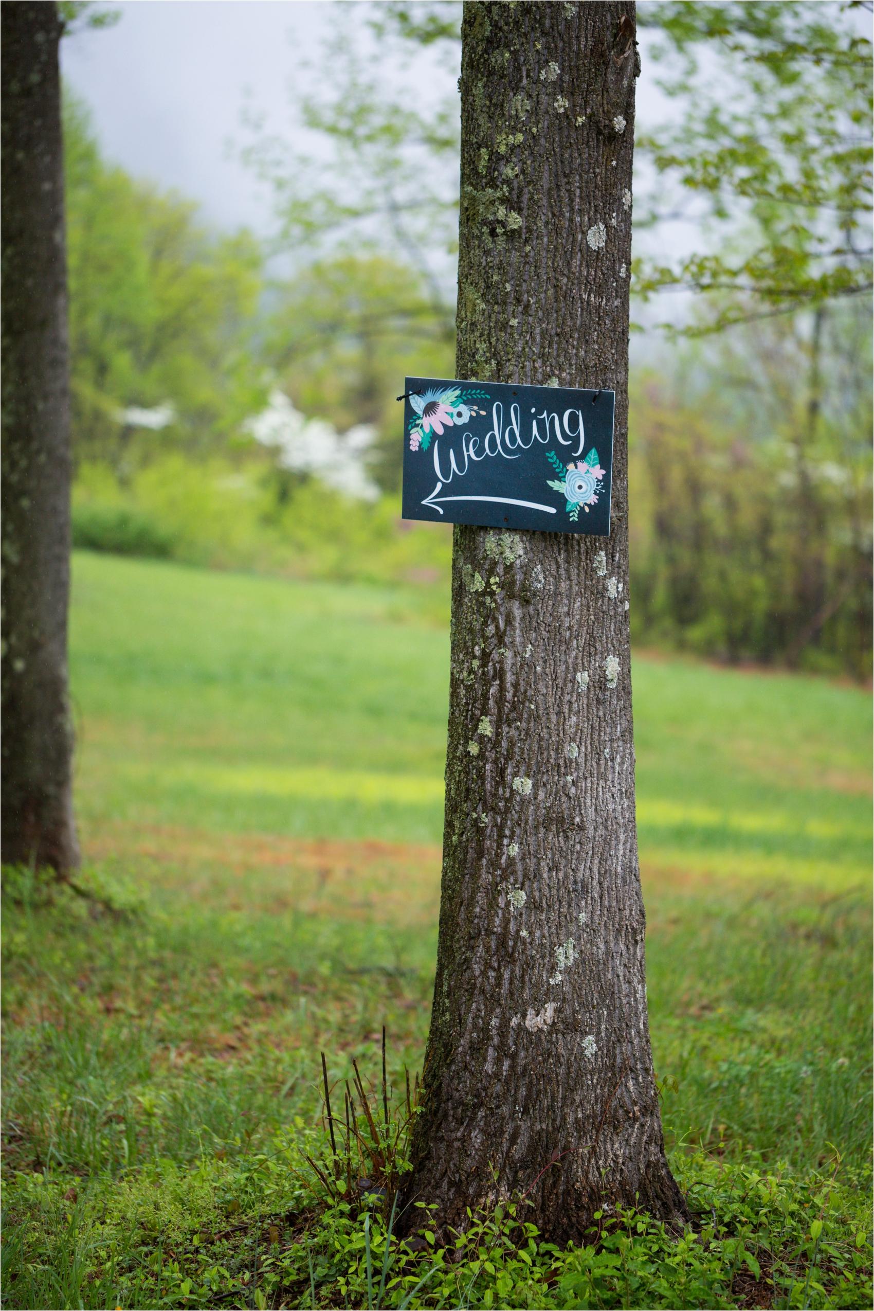 Lydia-Mountain-Spring-Virginia-Wedding-0520.jpg