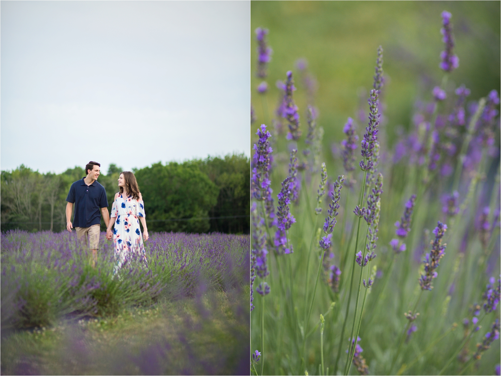 Seven-Oaks-Lavendar-Farm-Virginia-Engagement-Session-0036.jpg