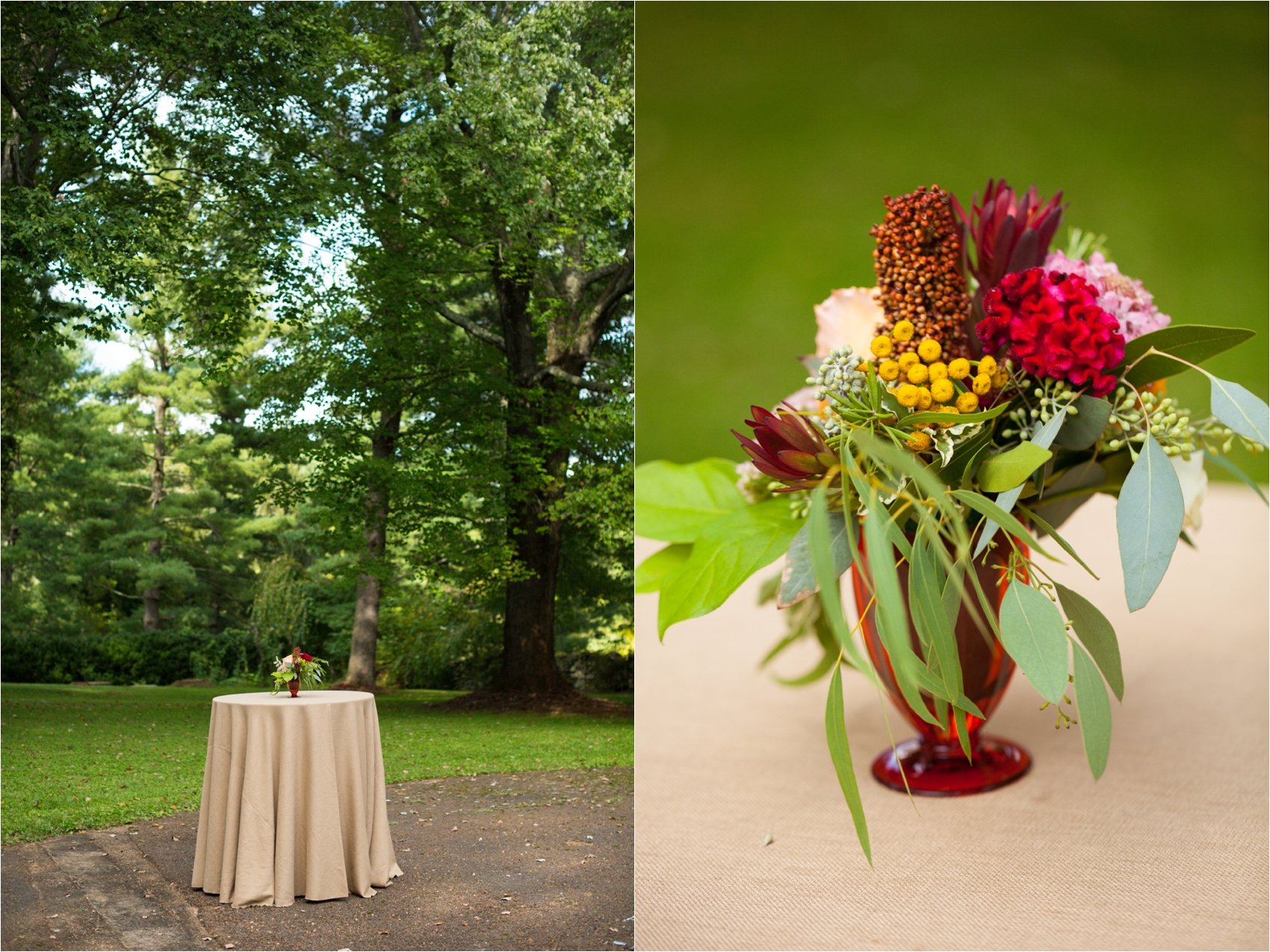 Feather-and-Oak-Rainforest-Trust-Virginia-Wedding-0308.jpg