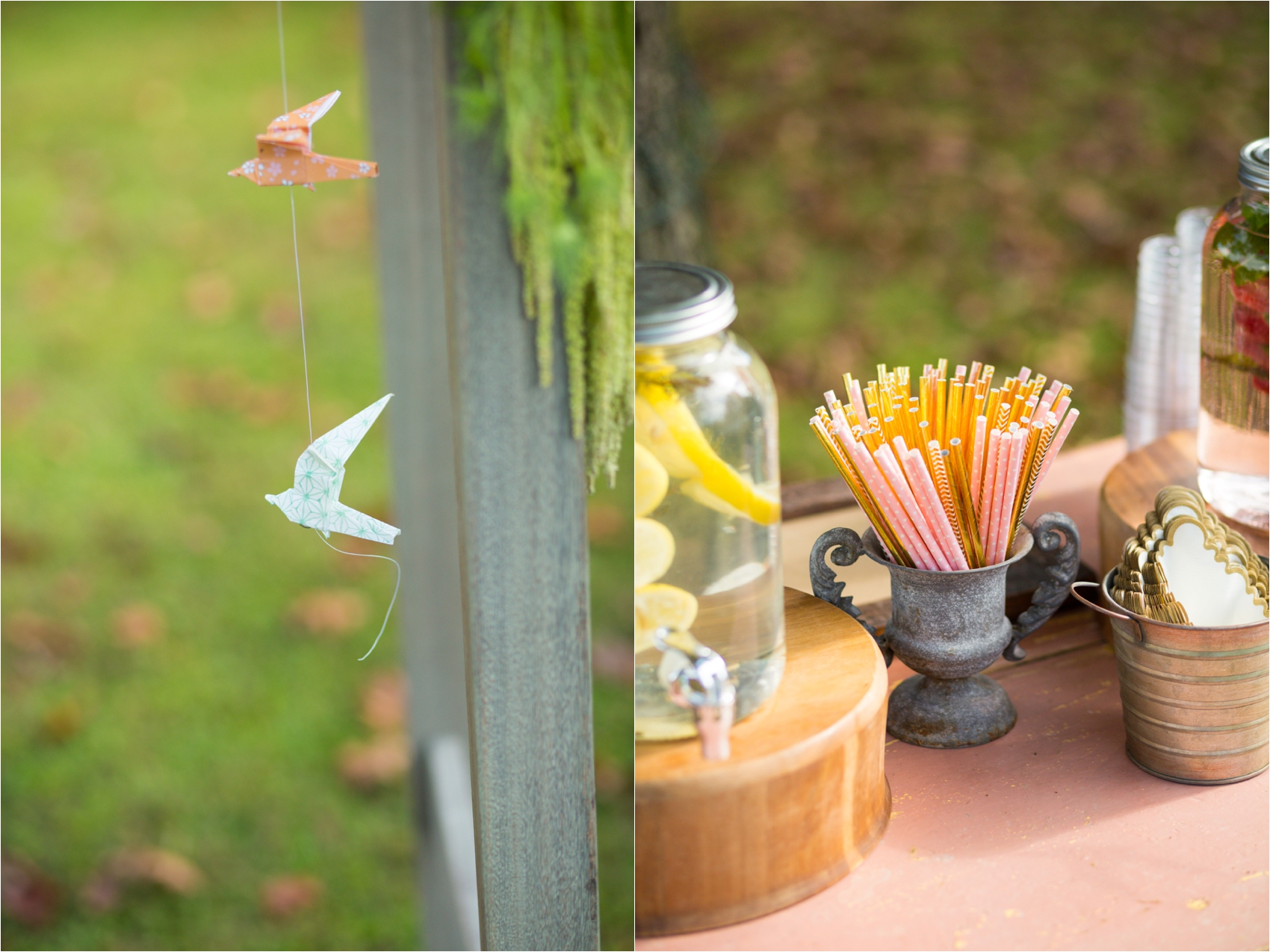 Feather-and-Oak-Rainforest-Trust-Virginia-Wedding-0390.jpg