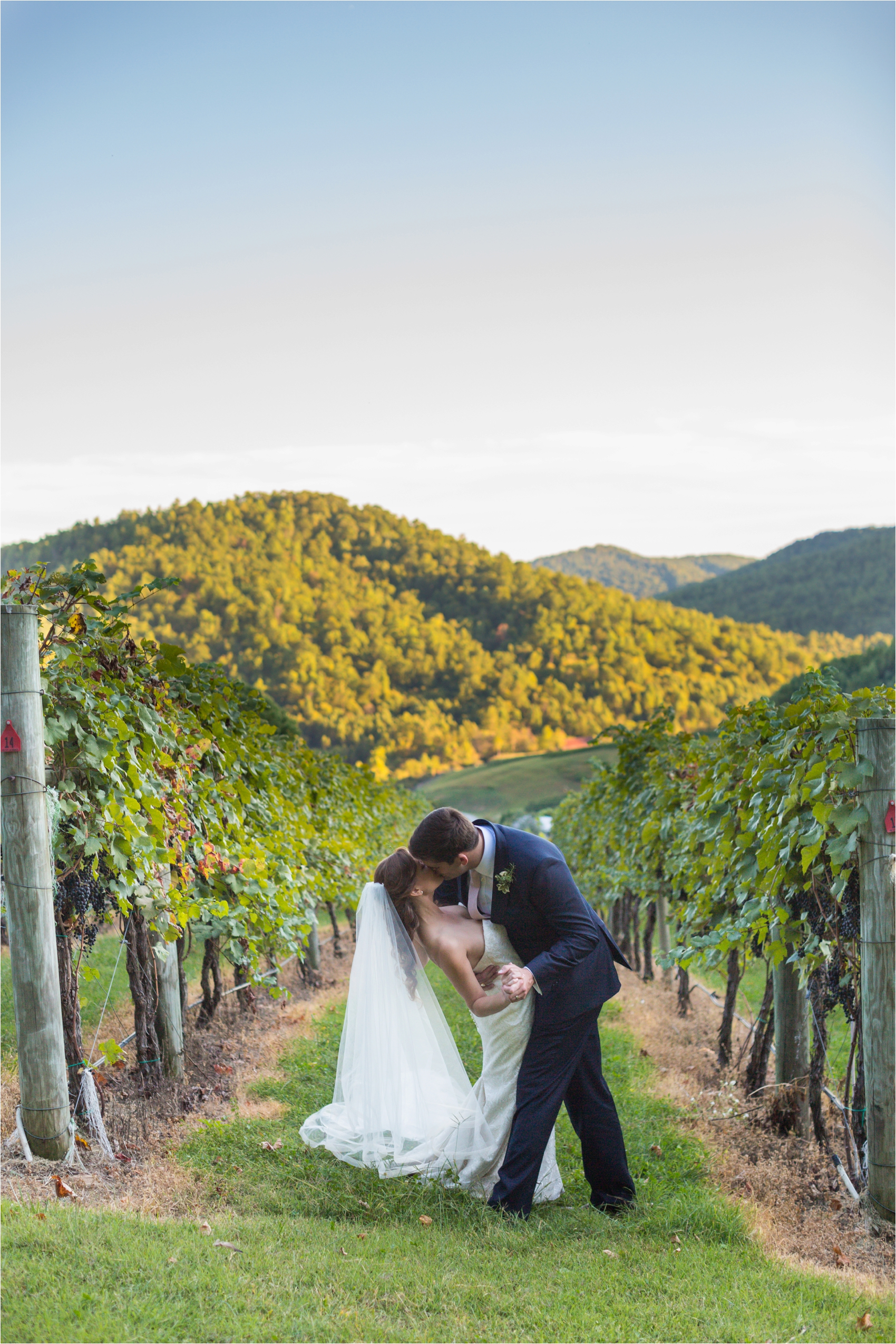 Delfosse-Vineyard-Wedding-Feather-and-Oak-Photography-0915.jpg