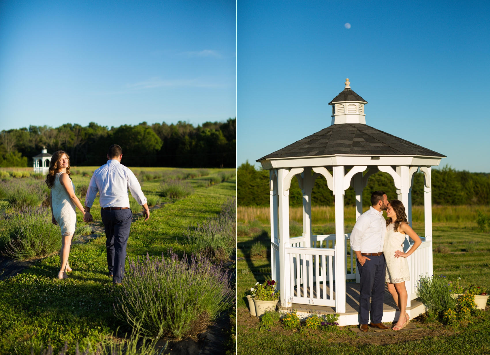 Seven-Oaks-Lavender-Farm-Engagement-Session-2019-0099.jpg