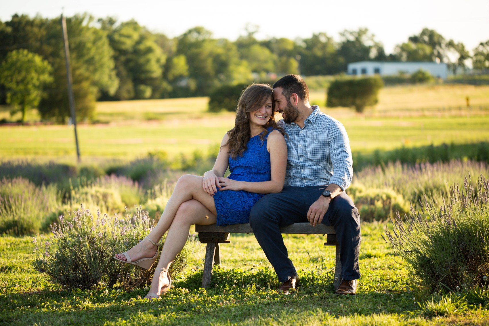 Seven-Oaks-Lavender-Farm-Engagement-Session-2019-0182.jpg
