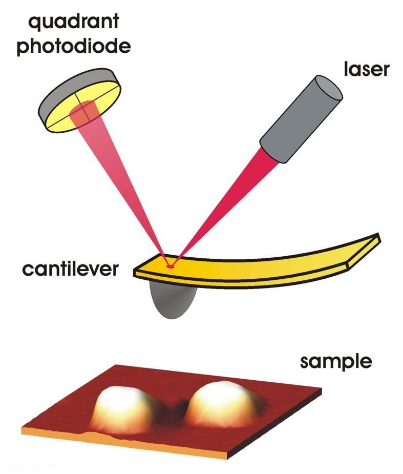 Atomic-force-microscope-HRes.jpg