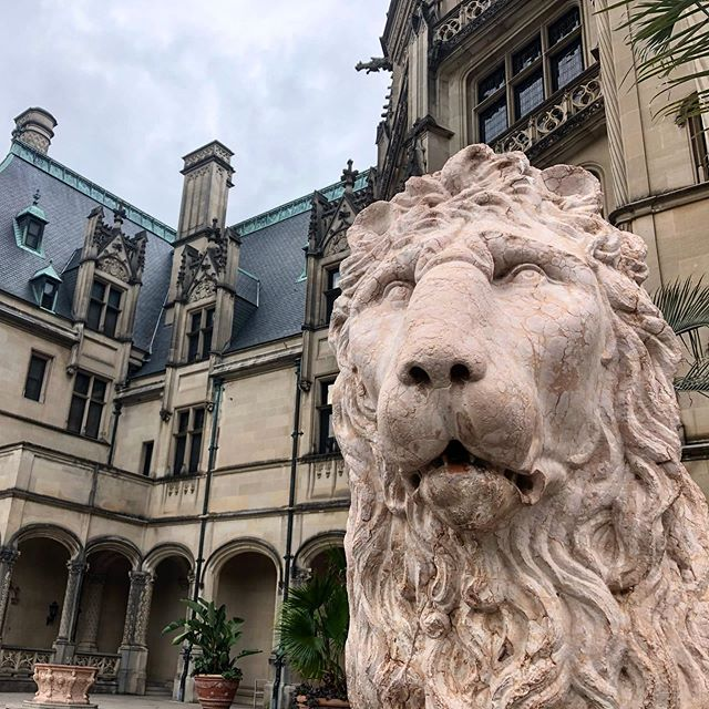 Back on location this week for the Rhododendron Ball. #asheville #portraitphotography #photography  #debutantes #waltersandwalters #ashevillenc #mountians #biltmore #biltmoreestate #lion #blueridgeparkway #travel #ncphotographer #tradition