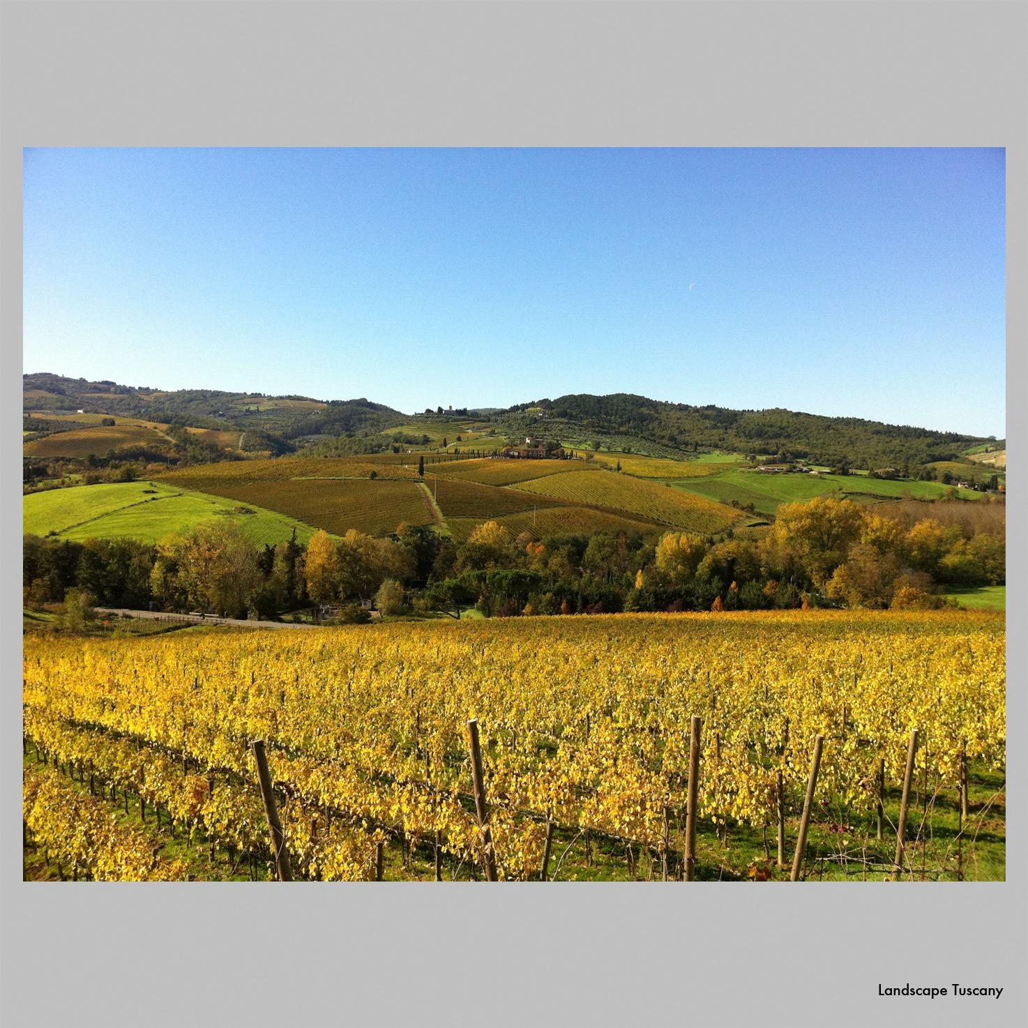 Landscape_Tuscany.jpg