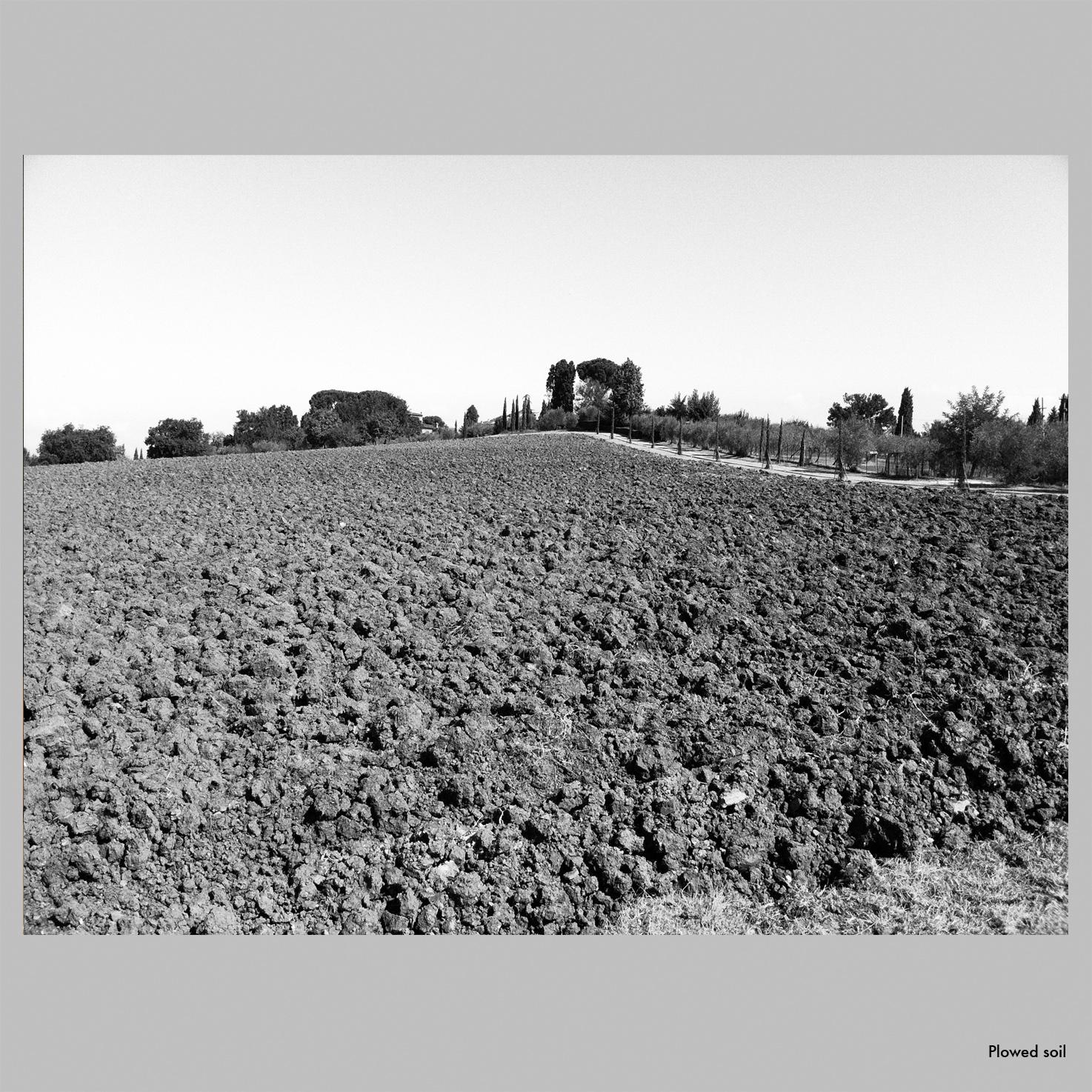 Plowed.jpg