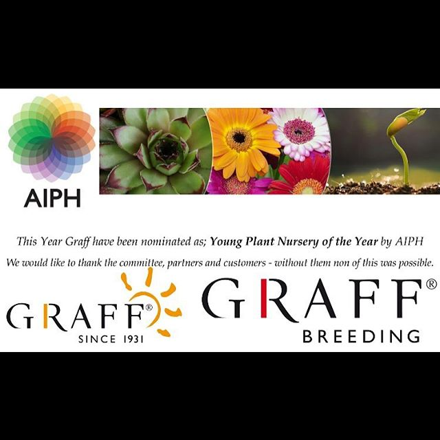 We are pleased to announce that our breeder have been nominated as Young Plant Nursery of the Year by AIPH. 🌺#hibisqs#nominated#youngplant#nurseryoftheyear#AIPH#graff