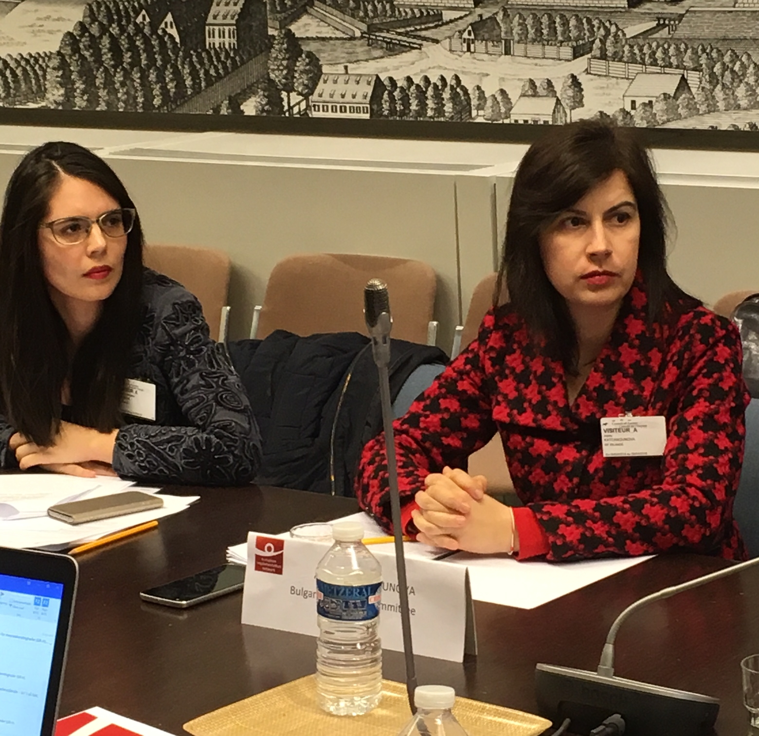 Ecaterina-Georgiana Gheorghe, Association for the Defence of Human Rights in Romania, the Helsinki-Committee, and Adela Katchaounova, Bulgarian Helsinki Committee. Photo: EIN