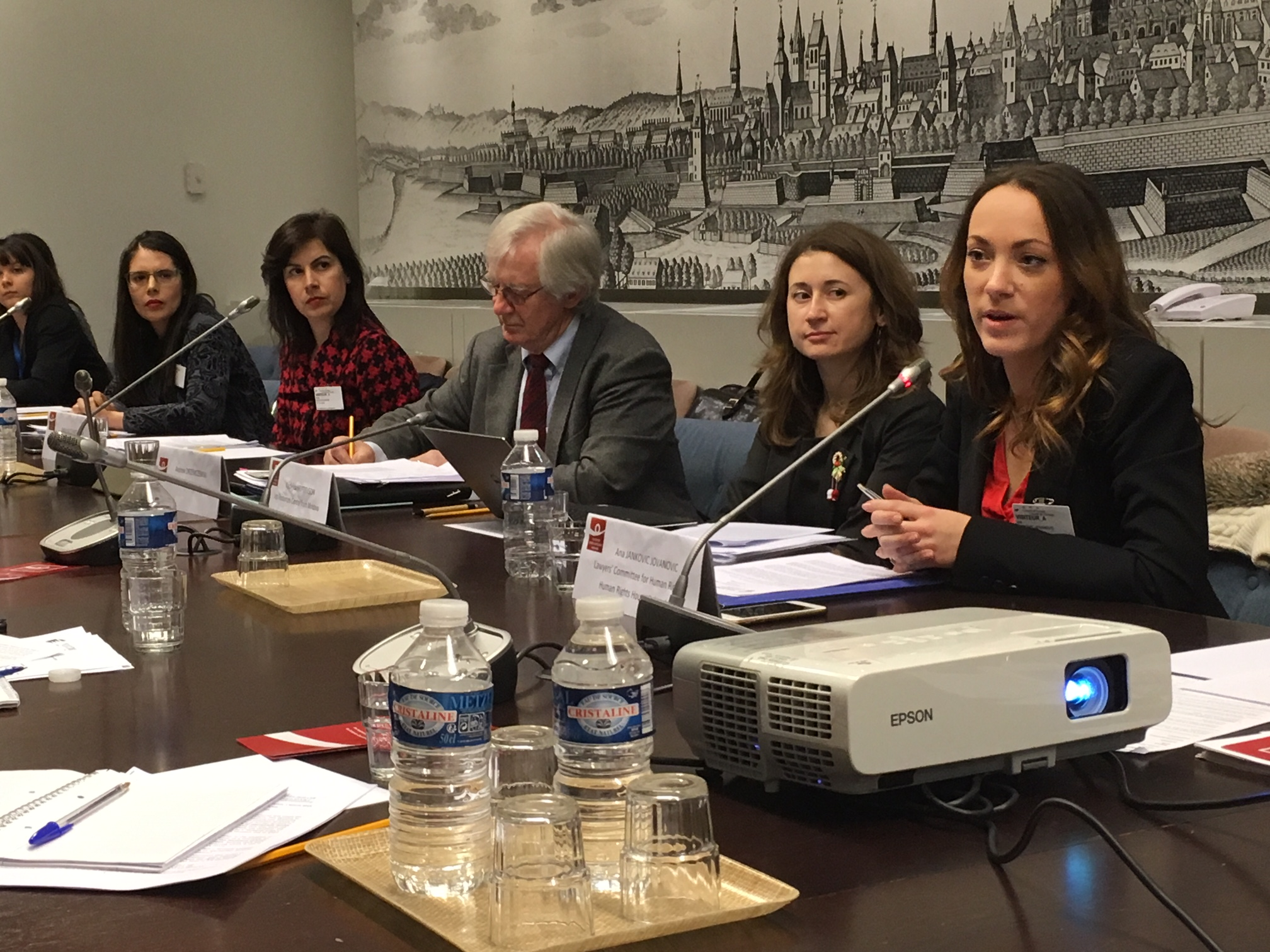 Ana Jankovic Jovanovic at the EIN briefing Photo: EIN
