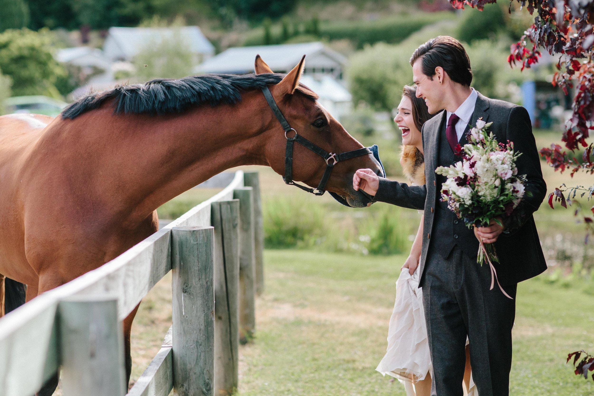 Bride-Groom-Elopement-New-Zealand-Horse-Ranch.jpg