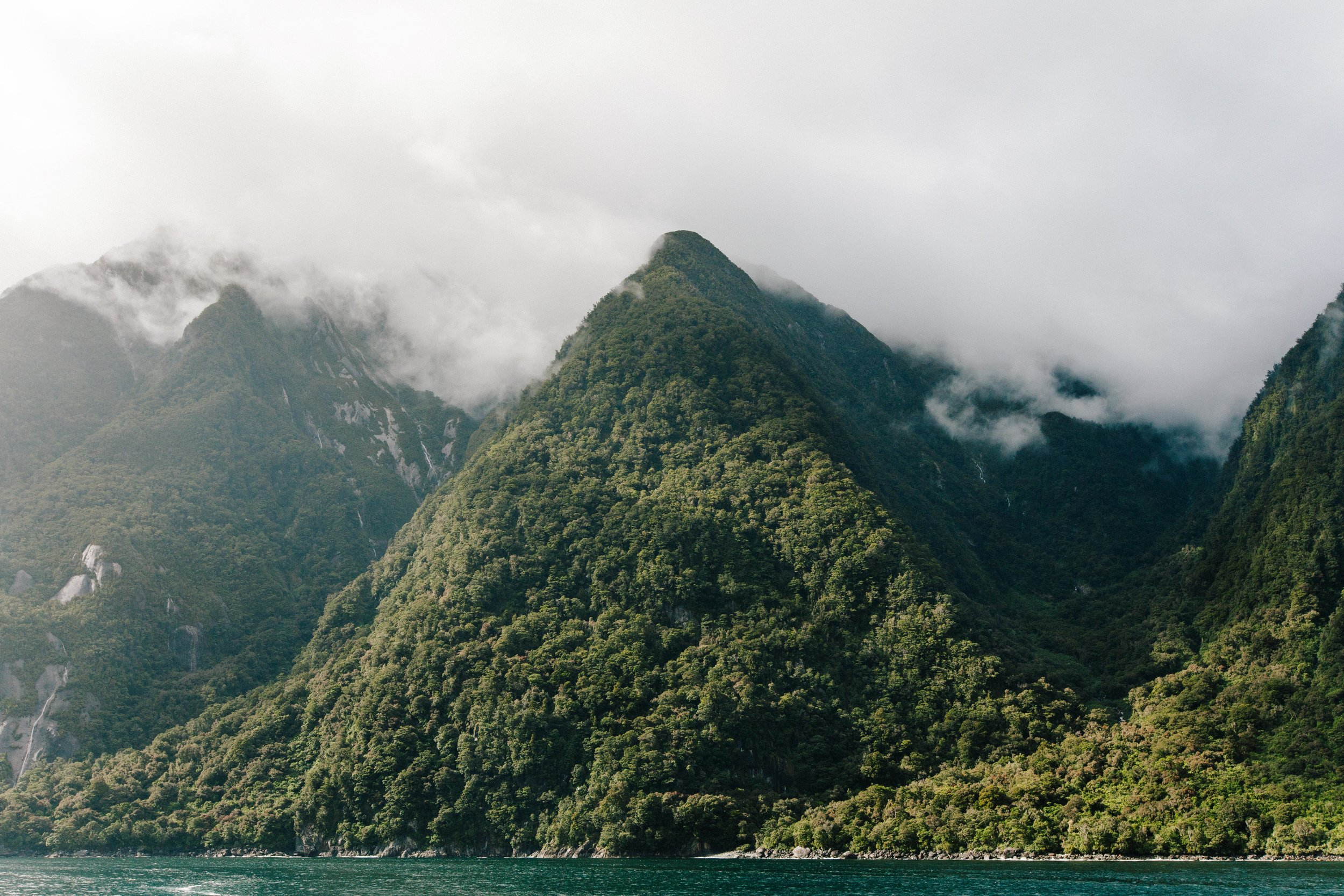 Milford Sound-New Zealand-Lush-Fjord.jpg